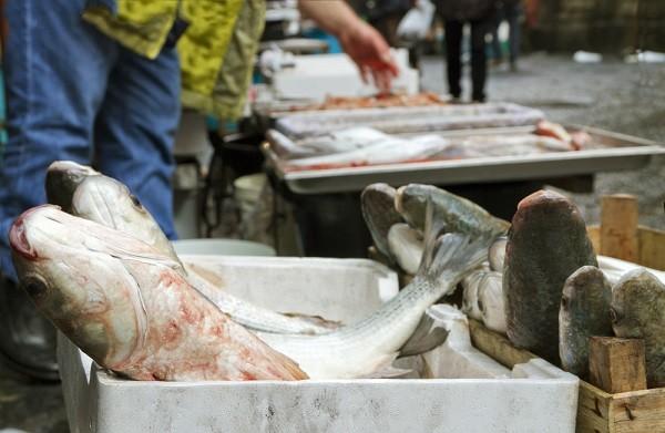 Catania-vismarkt (1)