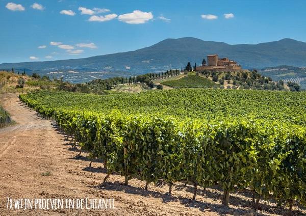 Ciao-tutti-Special-25-Vinissimo-Alles-over-Italiaanse-wijn-12