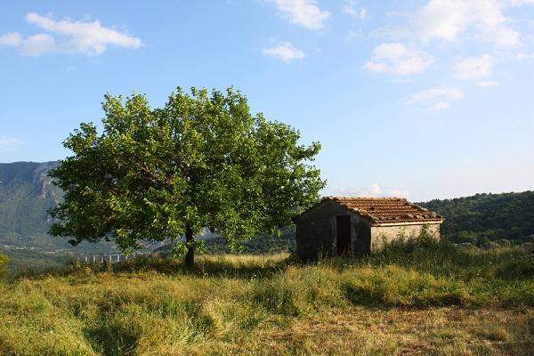 Cilento-Valle-Diano-natuur