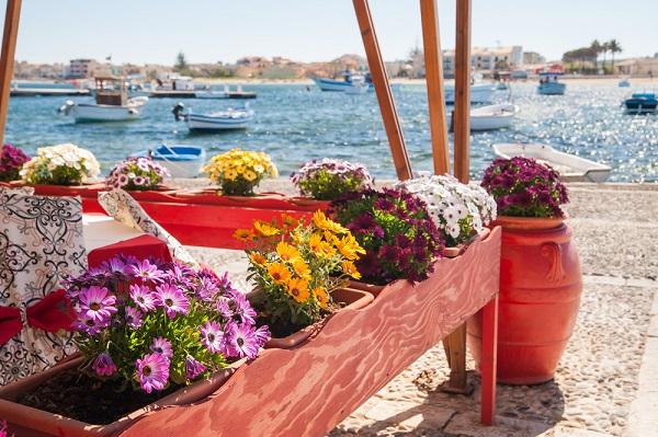 Ciuri-Ciuri-bloemen-Marzememi-Sicilië
