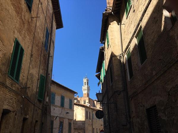 Contrada-Onda-Siena (7)
