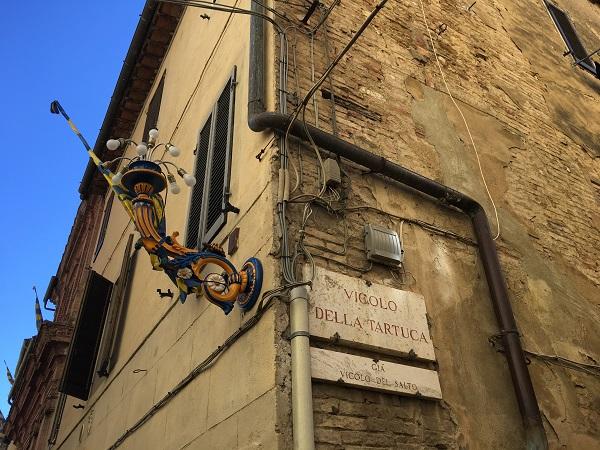 Contrada-della-Tartuca-Siena (28)