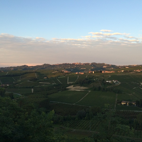 Cossetti-wijn-Piemonte (16)
