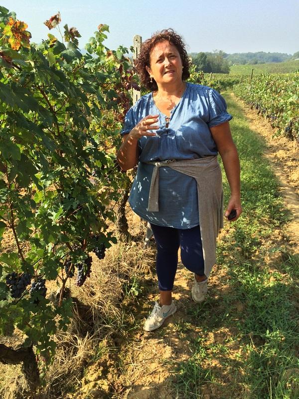 Cossetti-wijn-Piemonte (22)