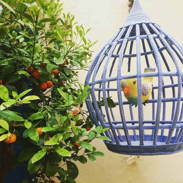 Eco-Capri (8)