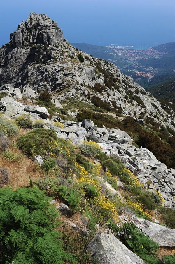 Elba-Monte-Capanne