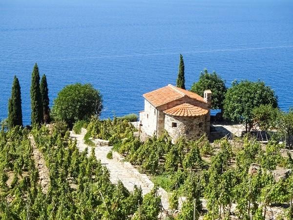 Elba-wijn