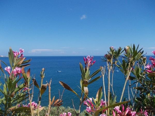 Eolische eilanden, Panarea (3)