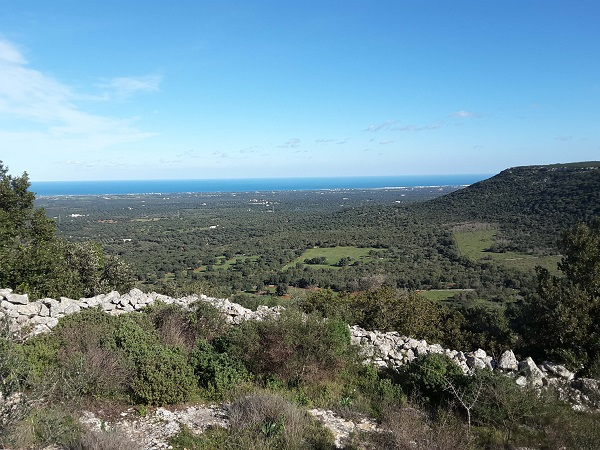Ferriprojects-Puglia (2)