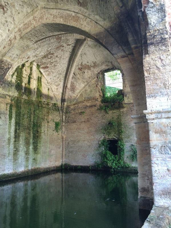 Fonte-Follonica-Siena (12)