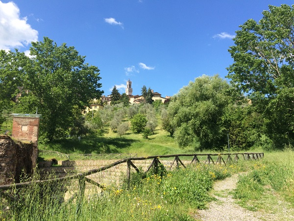 Fonte-Follonica-Siena (13)