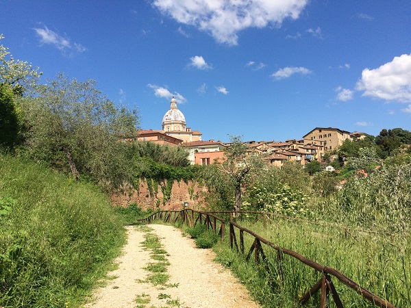 Fonte-Follonica-Siena (1a)