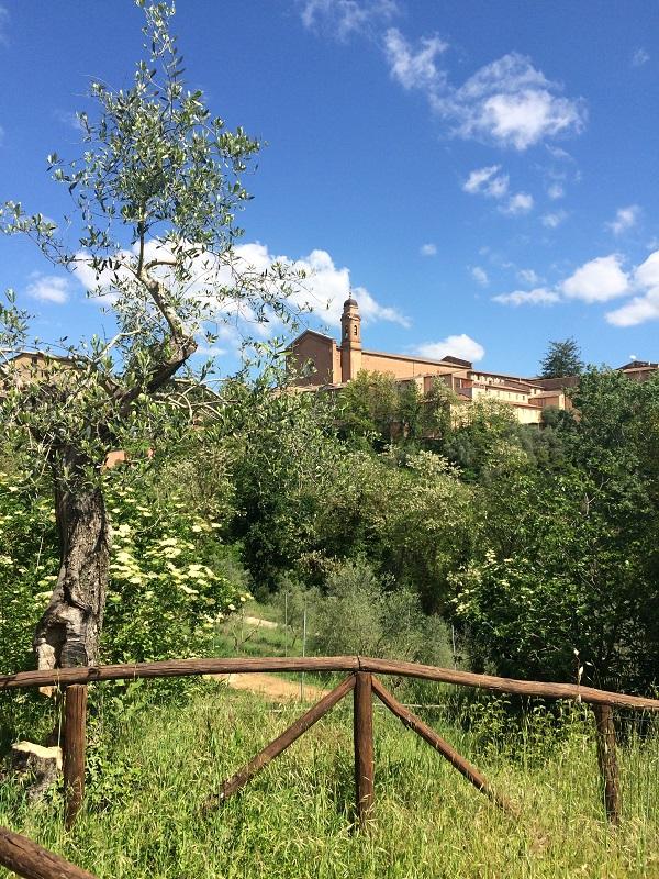 Fonte-Follonica-Siena (4)