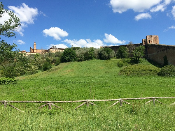 Fonte-Follonica-Siena (6)
