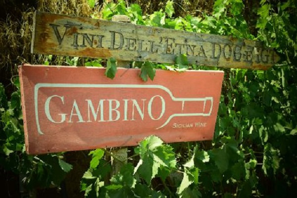 Gambino-Vini-Etna-Lingiaglossa-Sicilië (1)