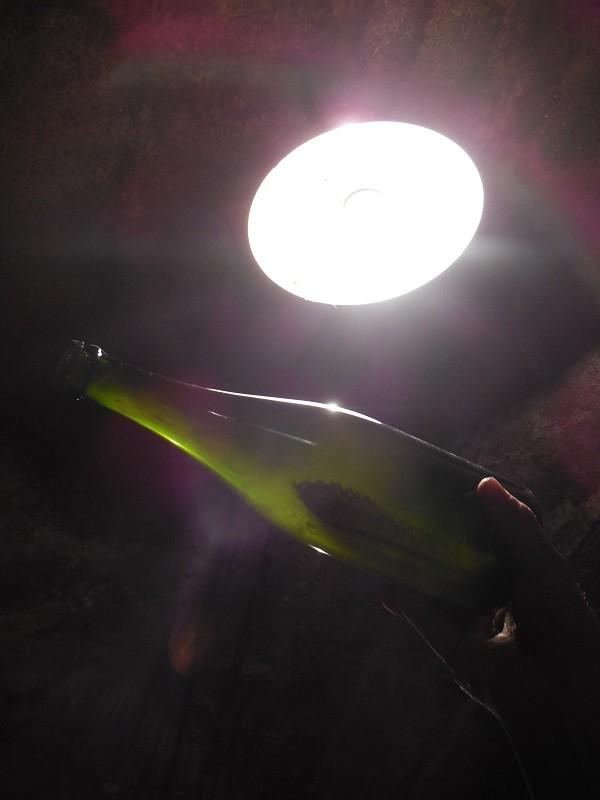 Gardameer-wijn (2)