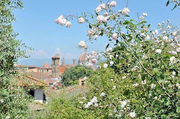 Giardino-delle-Rose-Florence-Inge-van-Beekum (3)
