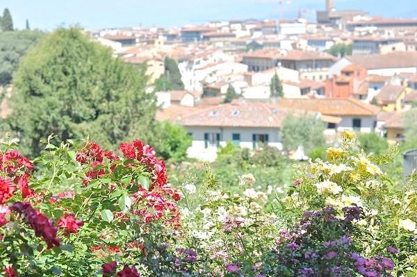 Giardino-delle-Rose-Florence-Inge-van-Beekum (5)