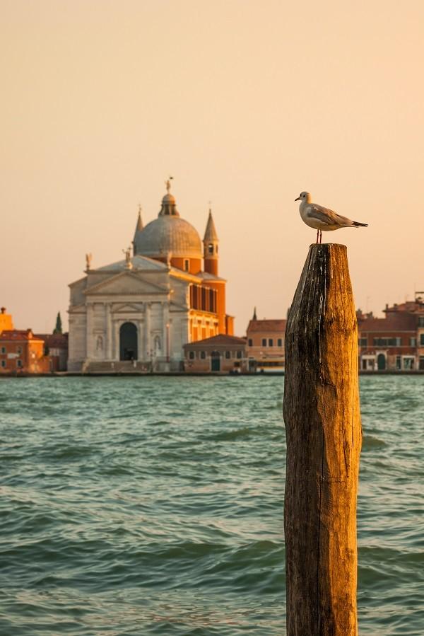 Giudecca-Venetië (1)