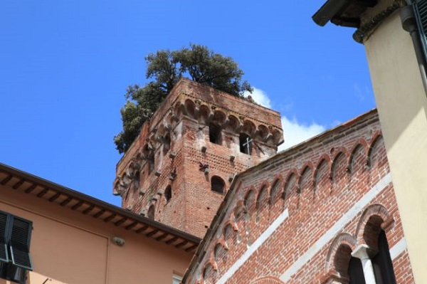 Green-Lucca-Verde-Cora-Konings (8)