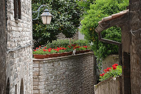 Gubbio-Umbrië-2