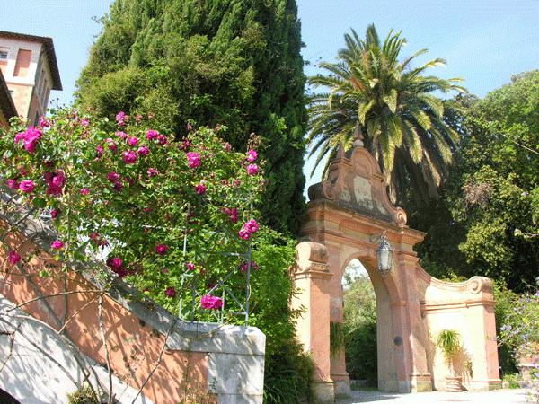 Hanbury-Ventimiglia-2c