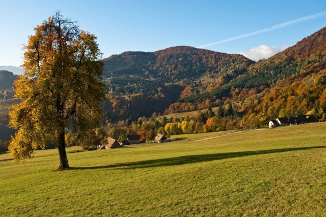 Herfst-in-Friuli-2