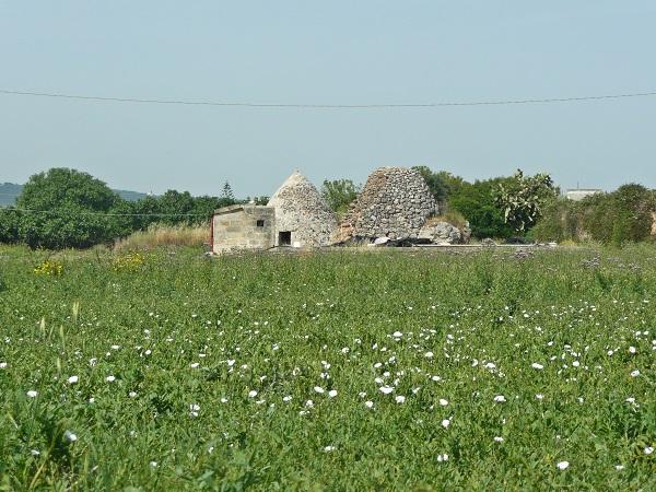 La-Finestra-sul-Mare-Monopoli-Puglia (6)
