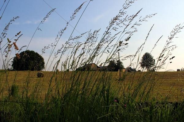 La-Scuola-omgeving (1)