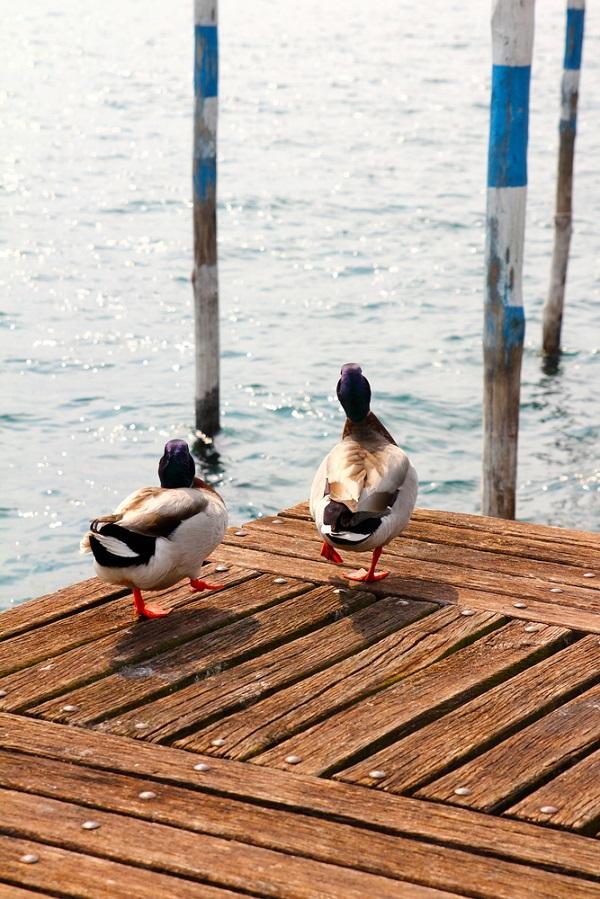 Lago-Iseo-meer