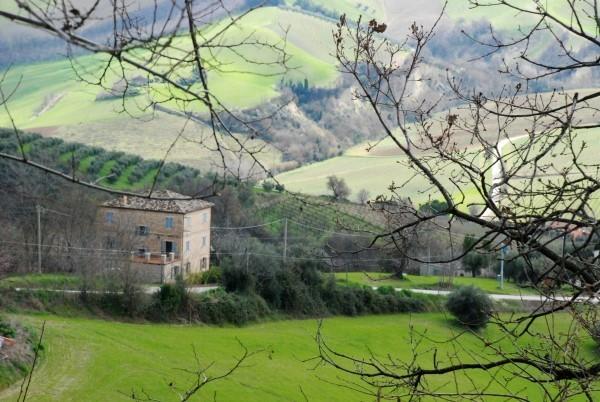 Le-Marche-Villa-Moltini (14)