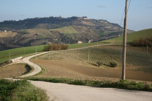 Le-Marche-Villa-Moltini (6)