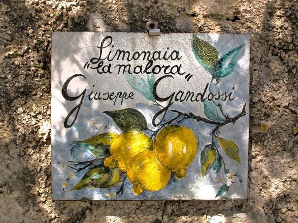 Limonaia-La-Malora-Gargnano-Garda