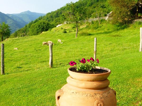 Locanda-del-Moro-Toscane (14)