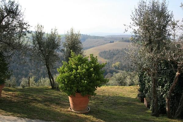 Lucignanello-borgo-details (3)