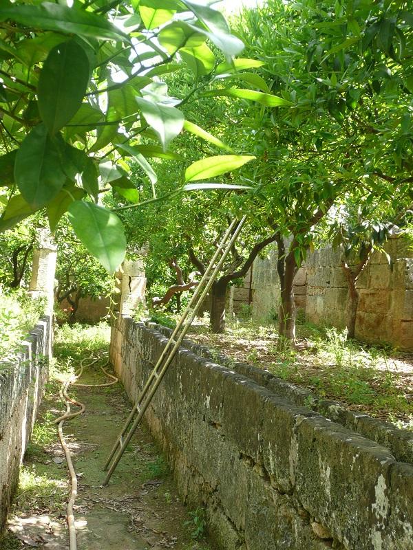 Masseria-Zacceria-Puglia (6)