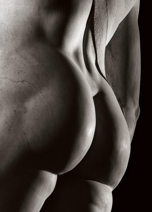 Michelangelo4