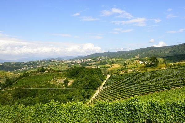 Monferrato-Piemonte