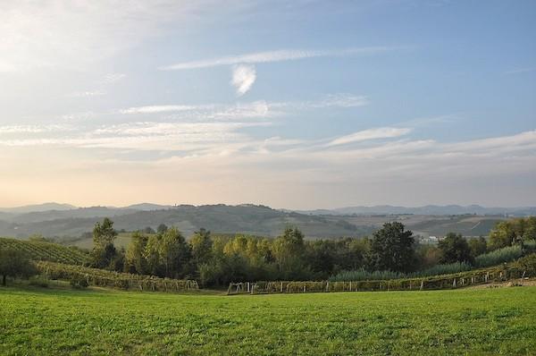 Monferrato-heuvels