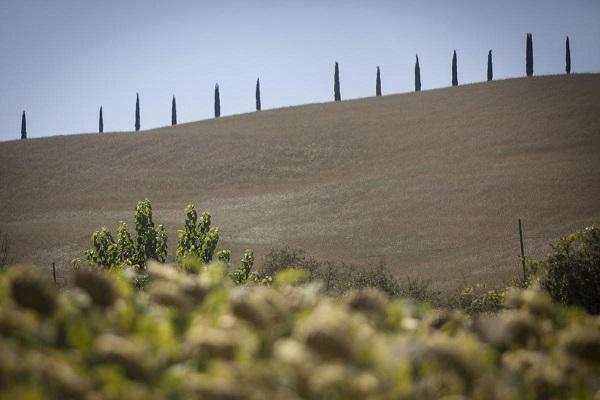My-Tuscan-Experience-Around-3