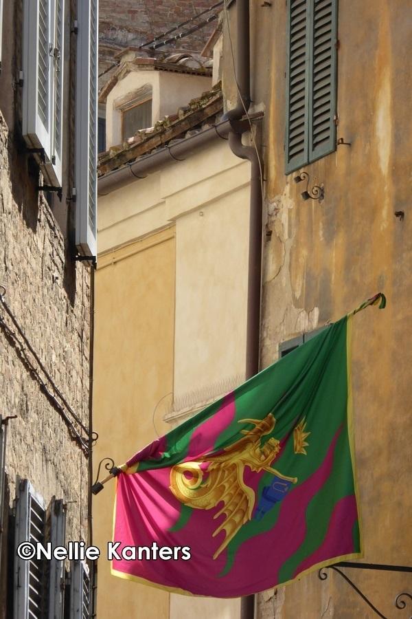 Nellie-Kanters-vlag-Drago-Siena