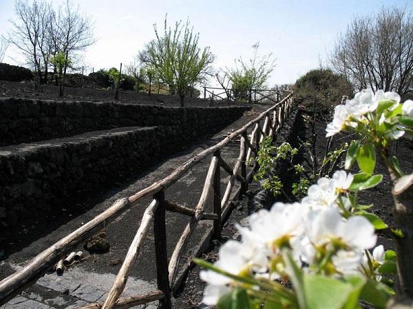 Nicolosi-Etna-Sicilie (2)