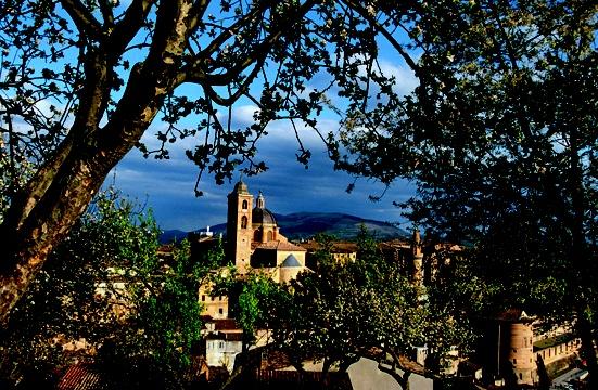 Italien, Marken, Urbino,  Stadtansicht  Europa, Marche, Baeume