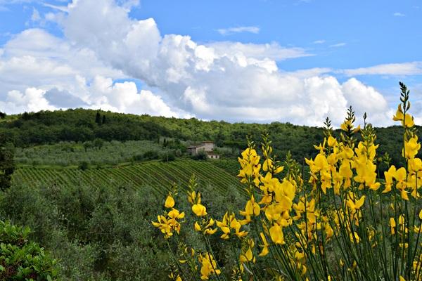 Op-een-Vespa-door-Toscane (22)