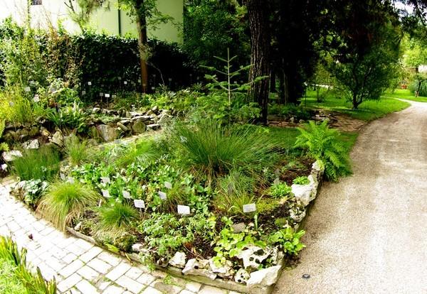 Orto-Botanico-Padova-botanische-tuin-Padua (1)
