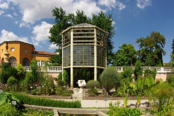 Orto-Botanico-Padova-botanische-tuin-Padua (5)