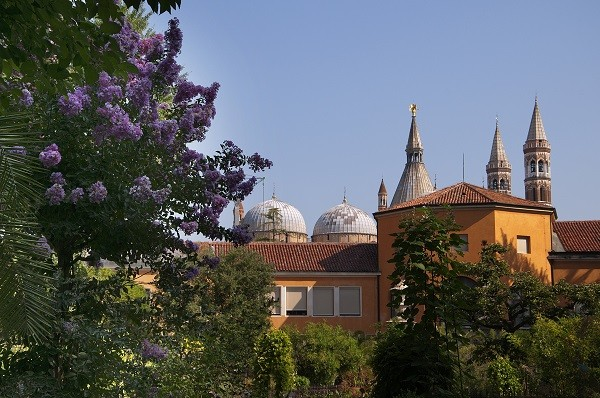 Orto-Botanico-botanische-tuin-Padua