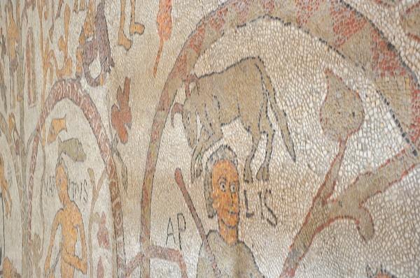 Otranto-kathedraal