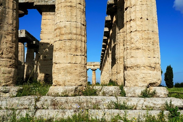 Paestum-tempels (2)