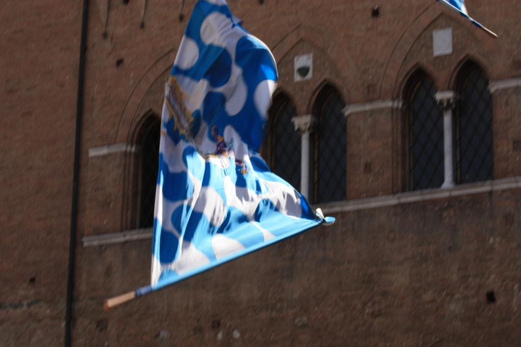 Palio-Siena (23)